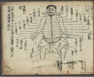 当流六脈之次第:並五臟之図(慶應義塾大学所蔵)